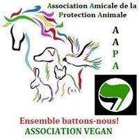 Association à but non lucratif luttant pour la protection animale.(Refuge, les conseils d'éducateurs canin et comportementaliste contre la maltraitance, Accompagnement des chiens de SDF...)